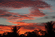 Red sky at night signals good weather in the morning. Sunset over a Surui village<br /><br />An Amazonian tribal chief Almir Narayamogo, leader of 1350 Surui Indians in Rondônia, near Cacaol, Brazil, with a $100,000 bounty on his head, is fighting for the survival of his people and their forest, and using the world's modern hi-tech tools; computers, smartphones, Google Earth and digital forestry surveillance. So far their fight has been very effective, leading to a most promising and novel result. In 2013, Almir Narayamogo, led his people to be the first and unique indigenous tribe in the world to manage their own REDD+ carbon project and sell carbon credits to the industrial world. By marketing the CO2 capacity of 250 000 hectares of their virgin forest, the forty year old Surui, has ensured the preservation, as well as a future of his community. <br /><br />In 2009, the four clans and 25 Surui villages voted in favour of a total moratorium on logging and the carbon credits project. <br /><br />They still face deforestation problems, such as illegal logging, and gold mining which causes pollution of their river systems