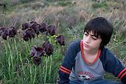 A young boy Admiring the Irises