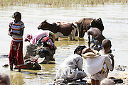Africa, Ethiopia, Children wash in the river cattle wash as well