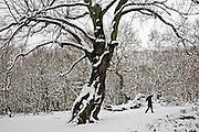 Lone person walks with umbrella across snow-covered Hampstead Heath, London, United Kingdom