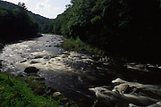 Rapids, Loyalsock Creek, World's End State Park, Sullivan Co., PA