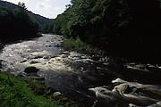 Rapids, Loyalsock Creek, World's End State Park, Sullivan Co., PA