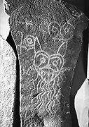 9305-B3499- 1.  Water monsters were spirits who lived in the Columbia river and swept victims into the currents. This Indian rock art (petroglyph) was removed from the Big Eddy area before being lost under the backwater of the The Dalles Dam in 1957. It was photographed in 1974 while at the Winquatt Museum in The Dalles. This rock art is now located on Temani Pesh-wa Trail in Columbia Hills State Park (formerly Horsethief Lake State Park), on the Washington side of the Columbia River Gorge near The Dalles.