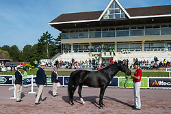 Stinna Tange Kaastrup, (DEN), Steffi Graf - Horse Inspection Para Dressage - Alltech FEI World Equestrian Games™ 2014 - Normandy, France.<br /> © Hippo Foto Team - Jon Stroud<br /> 25/06/14