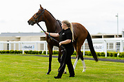 The Eagle's Nest ridden by Josephine Gordon and trained by Alexandra Dunn in the F45 Bath Training Guaranteed Results Handicap race.  - Ryan Hiscott/JMP - 06/05/2019 - PR - Bath Racecourse- Bath, England - Kids Takeover Day - Monday 6th April 2019