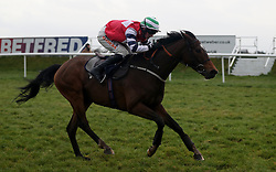 Wind Place and Sho ridden by Jack Quinlan