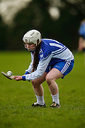 All Ireland Schools Senior B Camogie Quarter Final at Dunganny, Meath, 30th January 2016.<br /> Dunshaughlin CC vs Mercy Roscommon<br /> Nadine Doyle in action for Dunshaughlin CC<br /> Photo: David Mullen /www.cyberimages.net / 2016