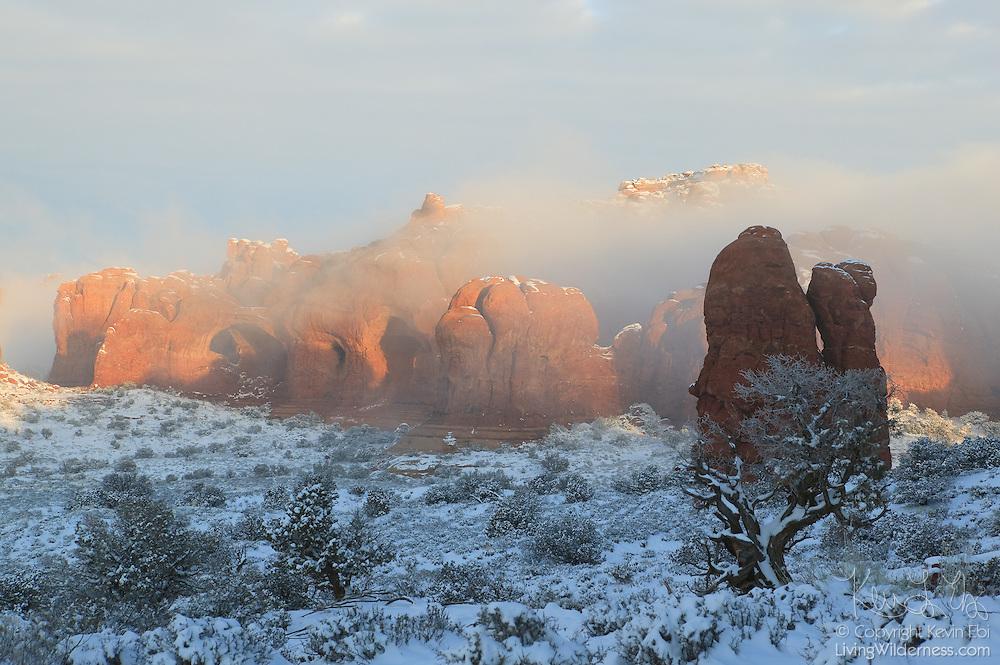 The golden light of sunrise blankets Elephant Butte, covered in fresh snow, in Arches National Park, Utah.