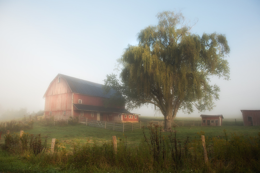 """Sunrise Fog on the Farm<br /> <br /> Available sizes:<br /> 18"""" x 12"""" print or canvas print<br /> <br /> See Pricing page for more information.<br /> <br /> Please contact me for custom sizes and print options including canvas wraps, metal prints, assorted paper options, etc. <br /> <br /> I enjoy working with buyers to help them with all their home and commercial wall art needs."""