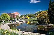 Ogród Botaniczny na Ostrowiu Tumskim we Wrocławiu