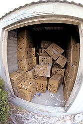 Sanccob Boxes For Transporting Penguins