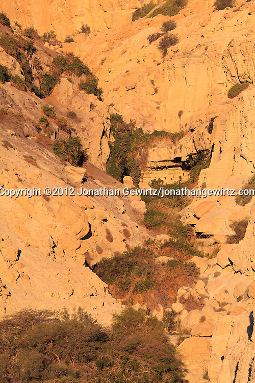 Nahal David, the river at the bottom of the scenic canyon terminating at the David Falls in the Ein Gedi nature preserve. WATERMARKS WILL NOT APPEAR ON PRINTS OR LICENSED IMAGES.