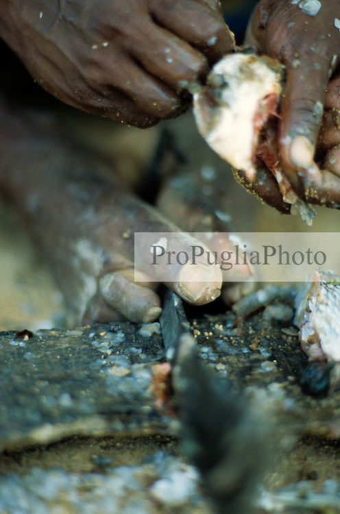Using Hand and Feet. A man is holding a knife inbetween his toes whilst cleaning the fish with his hands.