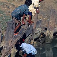 Asia, Nepal, Bardia. Kids playing at water's edge in Bardia, Nepal.