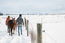 Young couple walking with horses in field, Bavaria, Germany