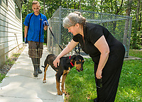 """Adam Tatarsky holding """"Pipi"""" a black and tan Coon Hound greets MaryLee Gorham-Waterman at the NH Humane Society on Monday morning.  (Karen Bobotas/for the Laconia Daily Sun)"""