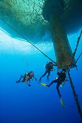 scuba diving workers, repairing 3,000-cubic-meter submersible fish pen installed in open ocean just off Kona Coast to raise Kona Kampachi, Hawaiian yellowtail, aka almaco jack or kahala, Seriola rivoliana, Kona Blue Water Farms, Big Island, Hawaii, Pacific Ocean