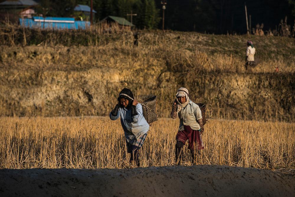Apatani women carrying baskets<br /> Apatani Tribe<br /> Ziro Valley, Lower Subansiri District, Arunachal Pradesh<br /> North East India