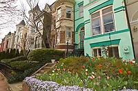 P Street, Georgetown, Washington D.C., U.S.A.