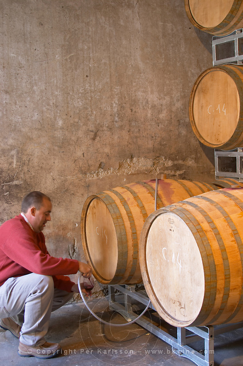 Jean-Christophe Piccinini Domaine Piccinini in La Liviniere Minervois. Languedoc. Barrel cellar. Drawing a sample with a tube. France. Europe.