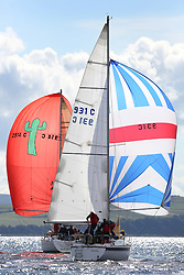 Peelport Clydeport, Largs Regatta Week 2014 Largs Sailing Club based at  Largs Yacht Haven with support from the Scottish Sailing Institute & Cumbrae.<br /> <br /> 931C, Mallie, Ken McLelland