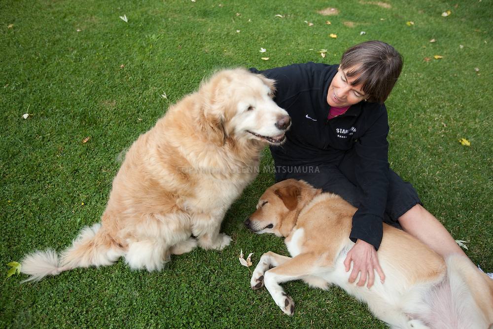 Stanford women's basketball coach, Tara VanDerveer at her home in Menlo Park, California. Playing with her two dogs.