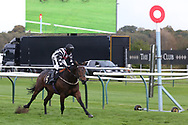 WRENTHORPE ridden by Graham Lee and trained by Bryan Smart winning The Mansionbet Proud To Support British Racing Handicap Stakes over 5f  at Nottingham Racecourse, Nottingham, United Kingdom on 14 October 2020.