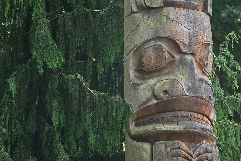 Burke Museum, University of Washington, Seattle, WA