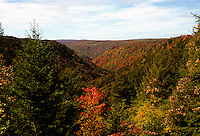 Blackwater Falls river Valley West Virginia