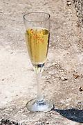 Glass of sparkling wine. Gangas marked in text on the glass. Vita@I Vitaai Vitai Gangas Winery, Citluk, near Mostar. Federation Bosne i Hercegovine. Bosnia Herzegovina, Europe.