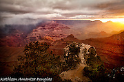 Grand Canyon National Park,Gnarled Junipers overlook Mather Point at Sunrise.