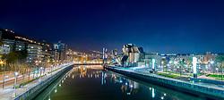 View of the Nervion River, the Puente de la Salve Bridge and the Guggenheim Museum, Bilbao, Spain