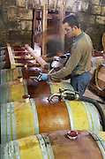 Topping up. Oak barrel aging and fermentation cellar. Chateau Brane Cantenac, Margaux, Medoc, bordeaux, France