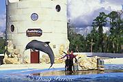 bottlenose dolphin, Tursiops truncatus, jumps for trainer, Sea World or Florida, Orlando, Florida, USA