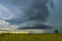 I was very surprised by how photogenic this storm was. It had a beautiful circular, rain-free base. This was just a smaller cell out in front of a bigger supercell and it didn't even look that interesting on radar. I was glad I came across this small prairie near Emden when I did.