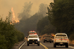 July 18, 2017 - Mariposa County, California, U.S. - The Detwiler fire burns along Highway 49 in Mariposa County. (Credit Image: © Andrew Kuhn/The Merced Sun Star via ZUMA)