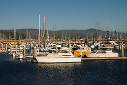 Boats in Princeton Harbor, .San Mateo Coast of California, south of San Francisco.  Photo copyright Lee Foster, 510-549-2202, lee@fostertravel.com, www.fostertravel.com. Photo 430-31233