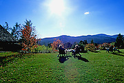 Image of the grounds of the Trapp Family Lodge in Stowe, Vermont, American Northeast by Andrea Wells