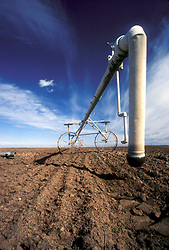 Stock photo of field irrigation sprinkler system for watering crops
