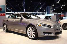Jaguar Rights Managed Stock Images