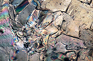 A microscope view of backlit sugar crystal, in polarized light.