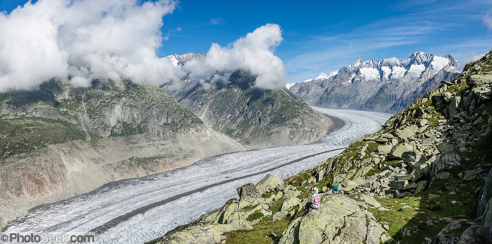 From Fiesch, lift to Fiesheralp, then hike to vast views of Aletsch Glacier via Hohbalm, Moosfluh, Hohfluh, Riderfurke, and Riederalp. Grosser Aletschgletscher is the largest glacier in the Alps (23 km or 14 miles long in 2014). The Swiss Alps Jungfrau-Aletsch region is honored as a UNESCO World Heritage Site. This image was stitched from multiple overlapping photos.