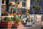 Harrisburg, PA, Allison Hill Row House Beautified Steps, Flowers, Cityscapes