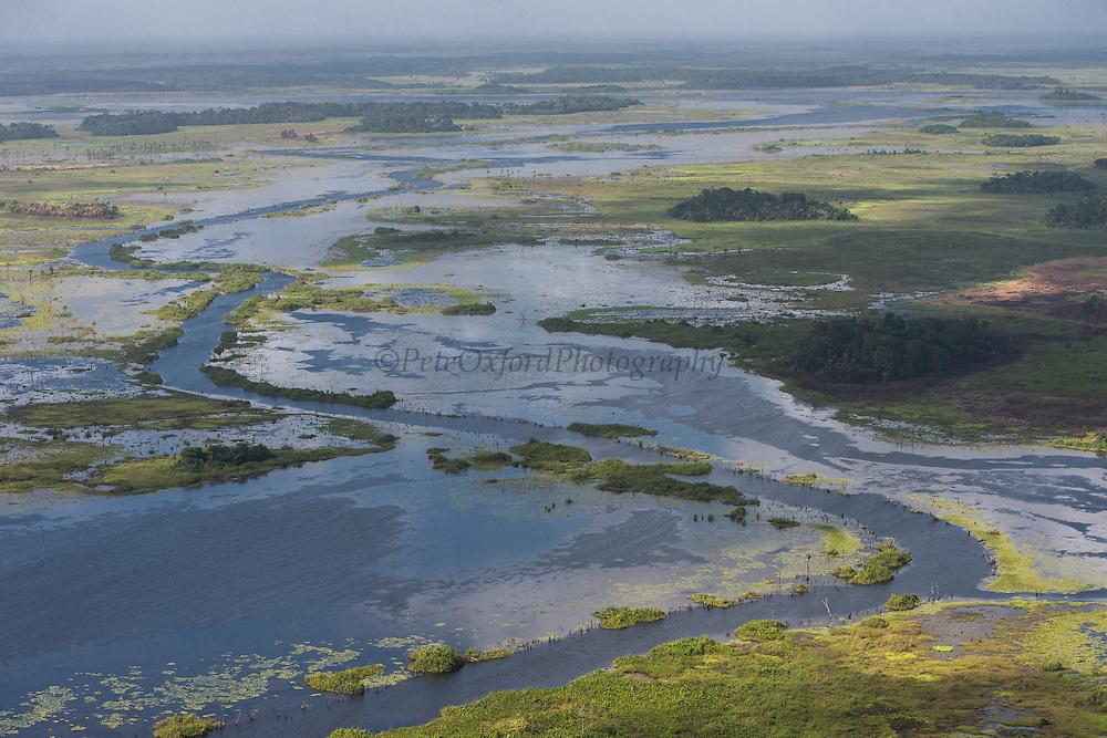 Wetland MMA<br /> Abari Swamps<br /> Mahaica Miconi Abari<br /> GUYANA<br /> South America