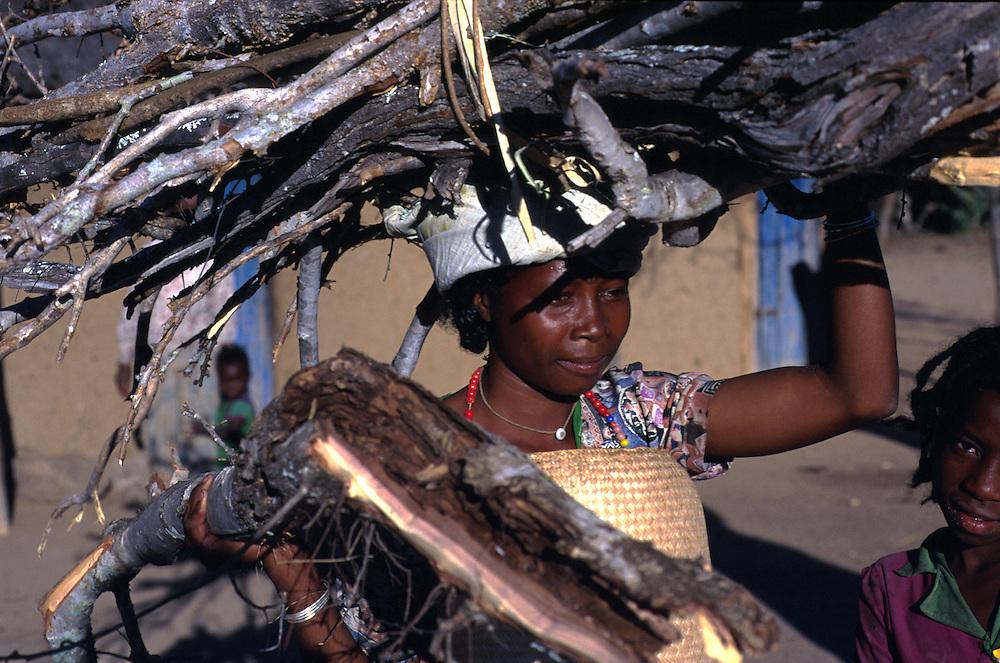 Collecting firewood, Betioky, Madagascar