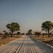 20211003 Maun Botswana <br /> Moremi nationalpark Okavangodeltat<br /> Sand väg<br /> <br /> <br /> ----<br /> FOTO : JOACHIM NYWALL KOD 0708840825_1<br /> COPYRIGHT JOACHIM NYWALL<br /> <br /> ***BETALBILD***<br /> Redovisas till <br /> NYWALL MEDIA AB<br /> Strandgatan 30<br /> 461 31 Trollhättan<br /> Prislista enl BLF , om inget annat avtalas.