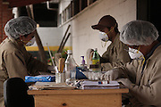 Team members from the National Police Historical Archives restore and preserve documents. On July 5, 2005, the historical archives of the now dissolved National Police were found in an abandoned arms depot in the outskirts of Guatemala City. The discovery of these millions of documents, which were allegedly lost after the 1996 Peace Accords, provide important evidence in the search for the thousands of people who were detained and subsequently disappeared by State security forces during the internal armed conflict (1960-1996). Guatemala City, Guatemala. March 20, 2009.