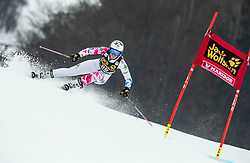 IGNJATOVIC Nevena of Serbia competes during the 6th Ladies'  GiantSlalom at 55th Golden Fox - Maribor of Audi FIS Ski World Cup 2018/19, on February 1, 2019 in Pohorje, Maribor, Slovenia. Photo by Vid Ponikvar / Sportida