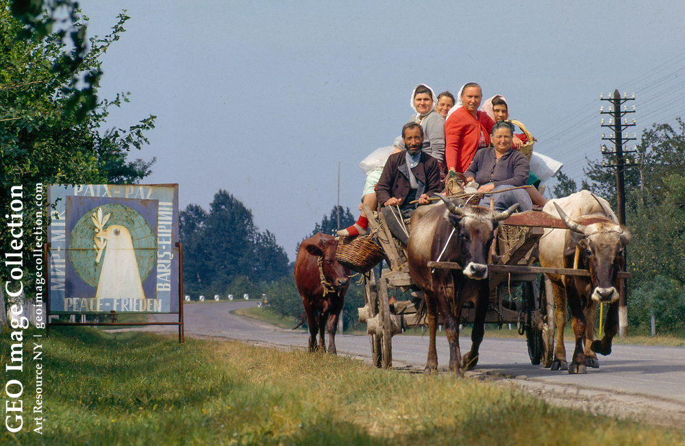Cooperative farmers ride to work past a road sign proclaiming peace.