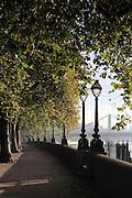 Autumn leaves along the Chelsea Embankment, towards Chelsea Bridge
